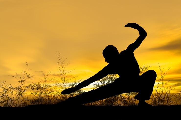 kung fu 2